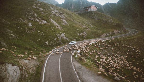 Où partir pour un road trip en Europe ?